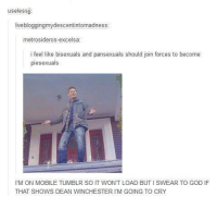 Gif, Gryffindor, and Memes: useless  live bloggingmydescentintomadness  metrosideros-excelsa  i fee  like bisexuals and pansexuals should join forces to become  piesexuals  l'M ON MOBILE TUMBLR SO IT WON'T LOAD BUTISWEAR TO GOD IF  THAT SHOWS DEAN WINCHESTER IM GOING TO CRY Chances are if it mentions pie there is probably a Dean Winchester gif attached to it ~Hazel Prior the Gryffindor from Panem