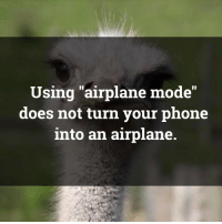 """Memes, Airplane, and Vacation: Using airplane mode""""  does not turn your phone  into an airplane but i wanna go on vacation 🙄"""