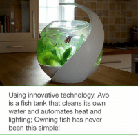 Meet Avo, a fish tank that naturally cleans its own water.: Using innovative technology, Avo  is a fish tank that cleans its own  water and automates heat and  lighting, Owning fish has never  been this simple! Meet Avo, a fish tank that naturally cleans its own water.