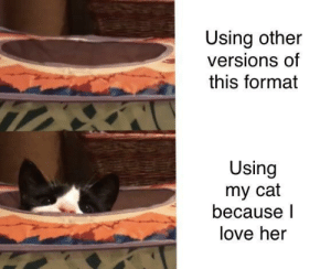 She makes me smile: Using other  versions of  this format  Using  my cat  because l  love her She makes me smile