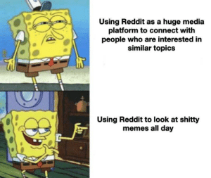 Memes, Reddit, and Irl: Using Reddit as a huge media  platform to connect with  people who are interested in  similar topics  Using Reddit to look at shitty  memes all day Me irl