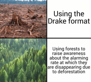 disappearing: Using the  Drake format  Using forests to  raise awareness  about the alarming  rate at which they  are disappearing due  to deforestation