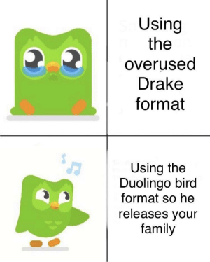 I forgot to do my Spanish hears a knock at the door: Using  the  overused  Drake  format  Using the  Duolingo bird  format so he  releases vour  family I forgot to do my Spanish hears a knock at the door