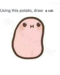 Using this potato, draw a cat.