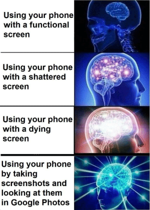 Google, Meme, and Phone: Using your phone   with a functional  screen  Using your phone  with a shattered  screen  Using your phone   with a dying  screen  Using your phone  by taking  screenshots and  looking at them  in Google Photos I stole this meme idea from my brother