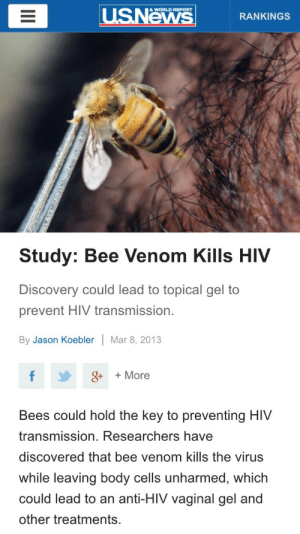 coffeeandcockatiels:  beetimesboo:  crosswordenthusiasts:  ohhenryd:  bluesunspots:  nothingbutaduckling:  IF THIS IS THE CURE I FEEL REALLY BAD FOR HIV POSITIVE PEOPLE WHO ARE ALLERGIC TO BEES  BEEES  BEES???  HEY LOOK MORE REASONS TO SAVE BEES  SAVE THE BEES HOLY SHIT BECAUSE THEY DIE ONCE THEY STING YOU SO IF THEY STING YOU TO CURE YOU THEN THEY DIE SO WE NEED MORE BEES  WE NEED MORE BEES. FOR BEE LUBE. : USNews  & WORLD REPORT  RANKINGS  Study: Bee Venom Kills HIV  Discovery could lead to topical gel to  prevent HIV transmission.  By Jason Koebler  Mar 8, 2013  8+ + More  Bees could hold the key to preventing HIV  transmission. Researchers have  discovered that bee venom kills the virus  while leaving body cells unharmed, which  could lead to an anti-HIV vaginal gel and  other treatments.  II coffeeandcockatiels:  beetimesboo:  crosswordenthusiasts:  ohhenryd:  bluesunspots:  nothingbutaduckling:  IF THIS IS THE CURE I FEEL REALLY BAD FOR HIV POSITIVE PEOPLE WHO ARE ALLERGIC TO BEES  BEEES  BEES???  HEY LOOK MORE REASONS TO SAVE BEES  SAVE THE BEES HOLY SHIT BECAUSE THEY DIE ONCE THEY STING YOU SO IF THEY STING YOU TO CURE YOU THEN THEY DIE SO WE NEED MORE BEES  WE NEED MORE BEES. FOR BEE LUBE.
