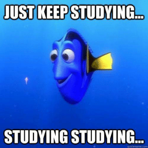 Tumblr, Http, and Com: UST KEEP STUDYING  ..  STUDYING STUDYING  quickmeme.com If you are a student Follow @studentlifeproblems