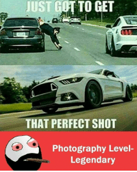 Memes, Photography, and 🤖: UST OTTO GET  THAT PERFECT SHOT  Photography Level  Legendary
