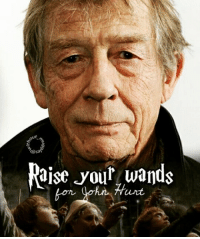 Memes, 🤖, and Maker: ut  Osal  aise your wands 's new edit! -^-♡-^- Hello guys! This is dedicated to John Hurt,the actor who played Ollivanfer,a wand maker from Diagon Alley. I really loved him.He was such a good actor and nobody else willl be able to be like him😔 ... [@lestranged @weasleydaughter @wweasleystwins @all_about_harry_potter_ @thisishermione @_riddikulus.fangirl_ ] ... Q : Raise your wands for John Hurt -* ... always johnhurt hp diagonalley
