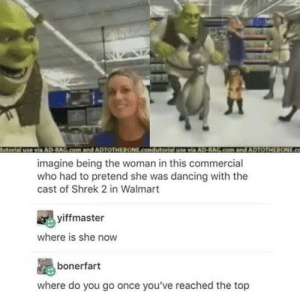 Dancing, Dank, and Memes: utorial use via AD-RAG.com.and ADTOTHEBONE.condutorial usevia AD-RAG.com and ADTOTHEBONE.co  imagine being the woman in this commercial  who had to pretend she was dancing with the  cast of Shrek 2 in Walmart  yiffmaster  where is she now  bonerfart  where do you go once you've reached the top Imagine being as lucky as she was by Inf1n1tyMagic MORE MEMES