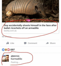 @funnyheadlines posts the craziest news story headlines from this f*cked up world we live in and it's the best new account on Insta 😂😂: uy accidentally shoots himself in the face after  bullet ricochets off an armadillo  techly.com.au  98  I Like  Comment  Share  697  Karmadillo  Posting.. @funnyheadlines posts the craziest news story headlines from this f*cked up world we live in and it's the best new account on Insta 😂😂