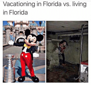 Good luck with that hurricane lol: Vacationing in Florida vs. living  in Florida Good luck with that hurricane lol