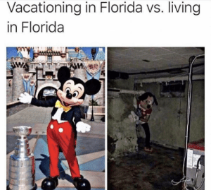 Meirl: Vacationing in Florida vs. living  in Florida Meirl