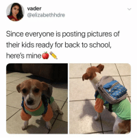 Af, Cute, and Memes: vader  @elizabethhdre  Since everyone is posting pictures of  their kids ready for back to school,  here's mine Cute AF