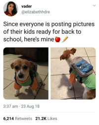 Memes, School, and Kids: vader  @elizabethhdre  Since everyone is posting pictures  of their kids ready for back to  school, here's mine  3:37 am 23 Aug 18  6,214 Retweets 21.2K Likes