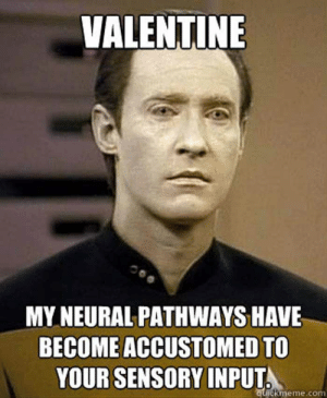 14 Funny Valentine's Day Memes - QuotesHumor.com | QuotesHumor.com: VALENTINE  MY NEURAL PATHWAYS HAVE  BECOME ACCUSTOMED TO  YOUR SENSORY INPUT  ckmeme.con 14 Funny Valentine's Day Memes - QuotesHumor.com | QuotesHumor.com