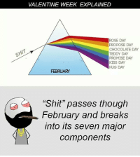 "Be Like, Meme, and Memes: VALENTINE WEEK EXPLAINED  ROSE DAY  PROPOSE DAY  CHOCOLATE DAY  TEDDY DAY  PROMISE DAY  KISS DAY  HUG DAY  FEBRUARY  ""Shit"" passes though  February and breaks  into its seven major  components Twitter: BLB247 Snapchat : BELIKEBRO.COM belikebro sarcasm meme Follow @be.like.bro"