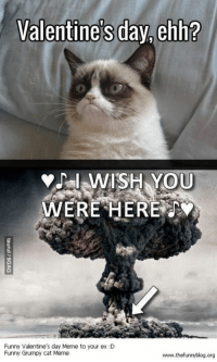 being alone for valentines... great ~roxx: Valentine's day ehh?  I WISH YOU  WERE HERE  Funny Valentine's day Meme to your ex :D  Funny Grumpy cat Meme  www.thefunryblog.org being alone for valentines... great ~roxx