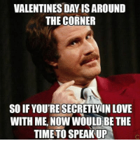 25 Funny Valentine Memes To Get You Through V Day #sayingimages #valentinememes #funnymemes #memes #funnyvalentine #funnyvalentinememes #valentinesday: VALENTINES DAY IS AROUND  THE CORNER  SO IF YOU'RESECRETLV IN LOVE  WITH ME, NOW WOULD BE THE  TIME TO SPEAK UP 25 Funny Valentine Memes To Get You Through V Day #sayingimages #valentinememes #funnymemes #memes #funnyvalentine #funnyvalentinememes #valentinesday