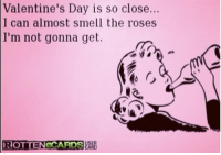 so close: Valentine's Day is so close...  I can almost smell the roses  I'm not gonna get.  ROTTENOCARDSHARD