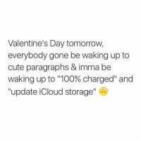 """Memes, Icloud, and 🤖: Valentine's Day tomorrow,  everybody gone be waking up to  cute paragraphs & imma be  waking up to """"100% charged"""" and  update iCloud storage Give it a rest already iCloud storage. I haven't updated you in the past 7 months. It's not going to happen. (@haaaofficial)"""