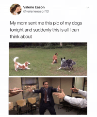 Dogs, Dank Memes, and Mom: Valerie Eason  @valerieeason13  My mom sent me this pic of my dogs  tonight and suddenly this is all I can  think about (@ship)
