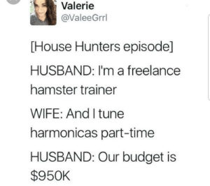 Money, Budget, and Hamster: Valerie  @ValeeGrrl  [House Hunters episode]  HUSBAND: I'm a freelance  hamster trainer  WIFE: And I tune  harmonicas part-time  HUSBAND: Our budget is  $950K Why can't I have money