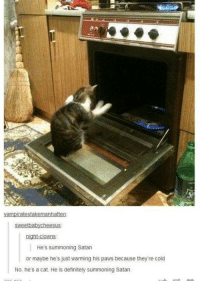 Cats, Definitely, and Funny: vampiratestakemanhatten:  weetbabycheesus  night-clowns.  He's summoning Satan  or maybe he's just warming his paws because theyre cold  No, he's a cat. He is definitely summoning Satan.