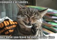 For more cute pics LIKE us at The Purrfect Feline Page: vampire cat smiles.  hand  because you have to sleep time  e For more cute pics LIKE us at The Purrfect Feline Page