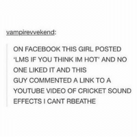 """Cricket, Girl, and Links: vampirevvekend:  ON FACEBOOK THIS GIRL POSTED  """"LMS IF YOU THINK IM HOT' AND NO  ONE LIKED IT AND THIS  GUY COMMENTED A LINK TO A  YOUTUBE VIDEO OF CRICKET SOUND  EFFECTS I CANT RBEATHE :0"""