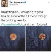 shotting: Van Applegate  @VBagate  I'm getting old. I was going to get a  beautiful shot of the full moon through  the budding trees for  @suepalkafox5dc, and then I focused