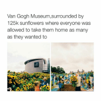 me on weekends: goes to sleep at 8pm me on weekdays: wHO NEEDS SLEEP!!!!! *goes to sleep two hours before school starts*: Van Gogh Museum,surrounded by  125k sunflowers where everyone was  allowed to take them home as many  as they wanted to me on weekends: goes to sleep at 8pm me on weekdays: wHO NEEDS SLEEP!!!!! *goes to sleep two hours before school starts*