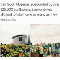 i hope jo takes me here one day~mulch: Van Gogh Museum, surrounded by over  125,000 sunflowers. Everyone was  allowed to take home as many as they  wanted to i hope jo takes me here one day~mulch