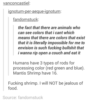Colorsomg-humor.tumblr.com: vanconcastiel:  ignotum-per-aeque-ignotum:  fandomstuck:  the fact that there are animals who  can see colors that i cant which  means that there are colors that exist  that it is literally impossible for me to  envision is such fucking bullshit that  i wanna rip open a couch and eat it  Humans have 3 types of rods for  processing color (red green and blue).  Mantis Shrimp have 16.  Fucking shrimp. I will NOT be jealous of  food.  Source: fandomstuck Colorsomg-humor.tumblr.com