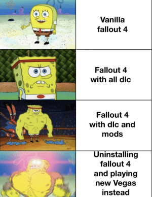 Just sayin': Vanilla  fallout 4  Fallout 4  with all dlc  Fallout 4  with dlc and  mods  Uninstalling  fallout 4  and playing  new Vegas  instead Just sayin'