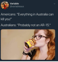 "Australia, Humans of Tumblr, and Ar 15: Variable  @variableaus  Americans: ""Everything in Australia can  kill you!""  Australians: ""Probably not an AR-15."""