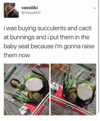 i really hope i don't kill them tbfh pray for me: Vassiliki  @Vassiliki  i was buying succulents and cacti  at bunnings and i put them in the  baby seat because i'm gonna raise  them now i really hope i don't kill them tbfh pray for me