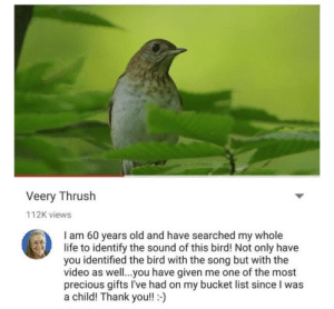 My heart is very full right now: Veery Thrush  112K views  I am 60 years old and have searched my whole  life to identify the sound of this bird! Not only have  you identified the bird with the song but with the  video as well..you have given me one of the most  precious gifts I've had on my bucket list since I was  a child! Thank you!!- My heart is very full right now