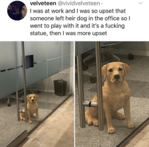 me🐶irl: velveteen @vividvelveteen  I was at work and I was so upset that  someone left heir dog in the office so l  went to play with it and it's a fucking  statue, then I was more upset me🐶irl