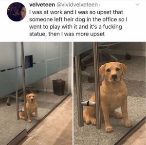 This. Is. Not. Funny. Bring your dog to work and let me go pet it!Tw: vividvelveteen: velveteen@vividvelveteen  I was at work and I was so upset that  someone left heir dog in the office so  went to play with it and it's a fucking  statue, then I was more upset This. Is. Not. Funny. Bring your dog to work and let me go pet it!Tw: vividvelveteen