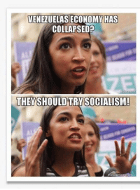 Memes, Socialism, and Hilarious: VENEZUELAS ECONOMY HAS  COLLAPSED  THEYSHOULD TRYSOCIALISM  SOCIALISM!  makeamem Satire, of course, but hilarious!