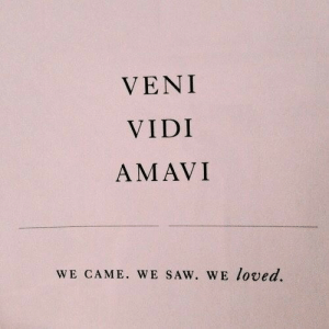 Saw, Came, and Veni: VENI  VIDI  AMAVI  WE CAME. wE SAW. WE loved.