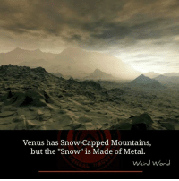 """Memes, Snow, and Venus: Venus has Snow-Capped Mountains,  but the """"Snow"""" is Made of Metal.  ein  or"""