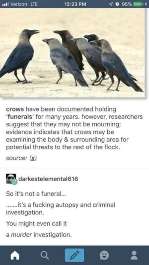 Fucking, Verizon, and Murder: Verizon LTE  12:23 PM  crows have been documented holding  'funerals' for many years. however, researchers  suggest that they may not be mourning;  evidence indicates that crows may be  examining the body & surrounding area for  potential threats to the rest of the flock.  source: (x)  darkestelemental616  So it's not a funeral...  .it's a fucking autopsy and criminal  investigation.  You might even call it  a murder investigation. Rip