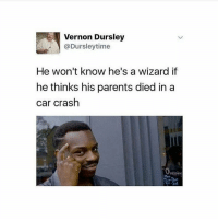 Memes, Wizards, and 🤖: Vernon Dursley  @Dursley time  He won't know he's a wizard if  he thinks his parents died in a  car crash  penino Omg I'm so close to 200k guys tysm !!!! Ps go comment something nice on @slughorns most recent post because it's her birthday !