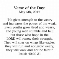"Philadelphia Eagles, Fall, and Memes: Verse of the Day:  May 5th, 2017  ""He gives strength to the weary  and increases the power of the weak.  Even youths grow tired and Weary,  and young men stumble and fall,  but those who hope in the  LORD will renew their strength  They will soar on wings like eagles;  they will run and not grow weary,  they will walk and not be faint.""  Isaiah 40:29-31"