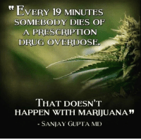 Drugs, Memes, and 🤖: VERY 19 MINUTES  SOMEBODY DIES OF  A PRESCRIPTION  DRUG OVERDOSE.  THAT DOESN'T  HAPPEN WITH MARIJUANA  SANJAY GUPTA, MD