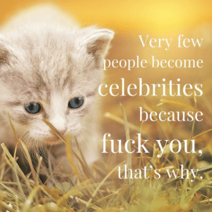 Fuck You, Fuck, and Because Fuck You: Very few  people become  celebrities  because  fuck you,  that's why