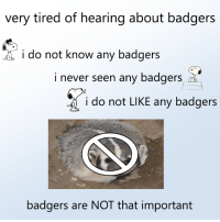 Dank, Never, and 🤖: very tired of hearing about badgers  i do not know any badgers  i never seen any badgers i.  i do not LIKE any badgers  badgers are NOT that important