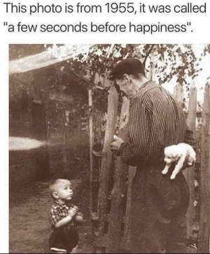 Very wholesome: Very wholesome